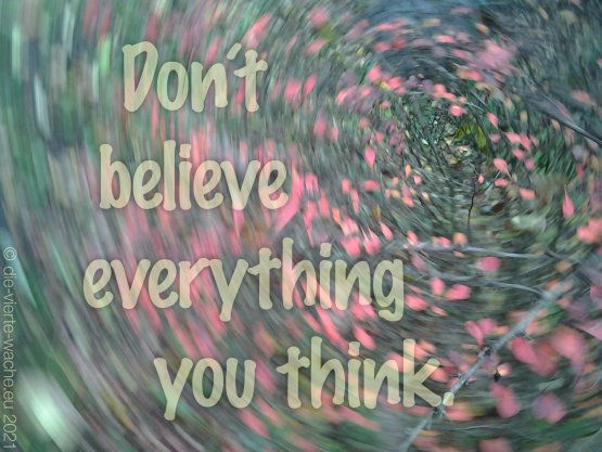 Don´t believe everything you think.